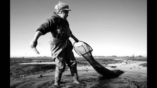 Portugal à Vista – ep72 – Mariscadores da Ria de Aveiro